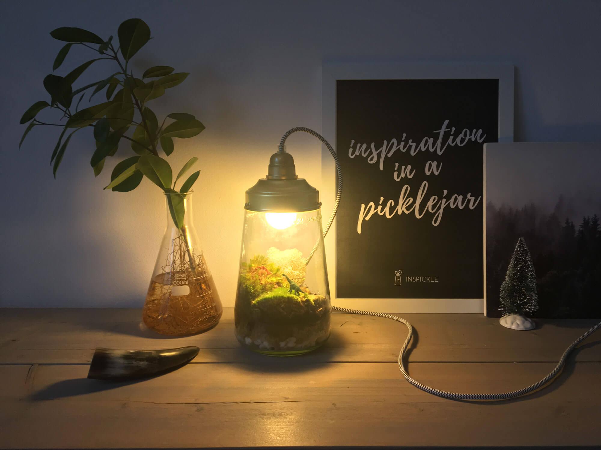 Beroemd ECOSYSTEEMLAMP KOPEN | maak een ecosysteem in een hippe lamp #ZC39