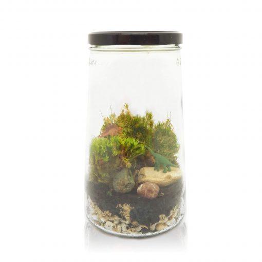 mini-ecosysteem kopen ecosysteem-in-een-pot-inspickle-dino-
