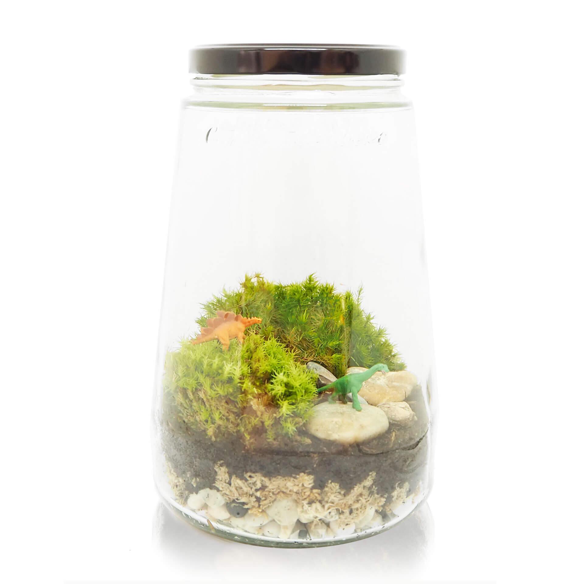 dino ecosysteem terrarium miniscape dino diy kit
