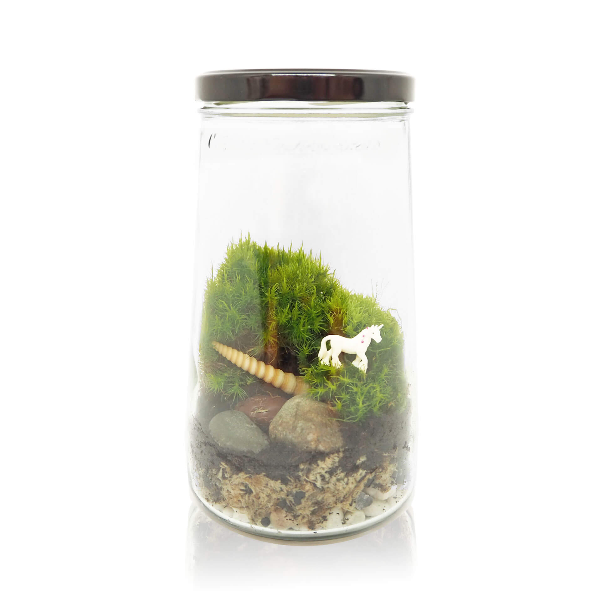 flessentuin kopen eenhoorn zelfmaak kit medium kesbeke pot inspickle ecosysteem