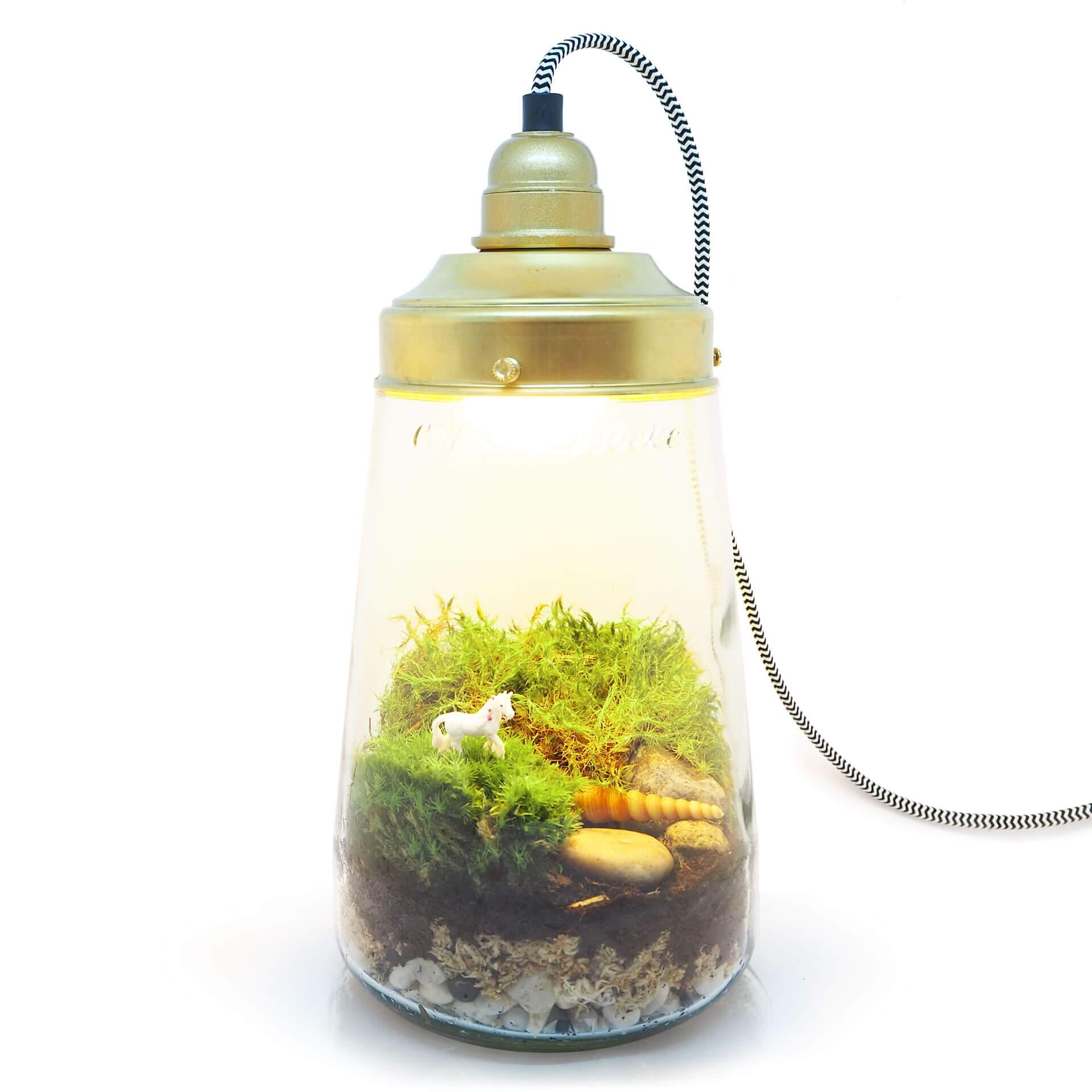 ecosysteem lamp eenhoorn mini-ecosysteem zelfmaken terrarium lamp inspickle