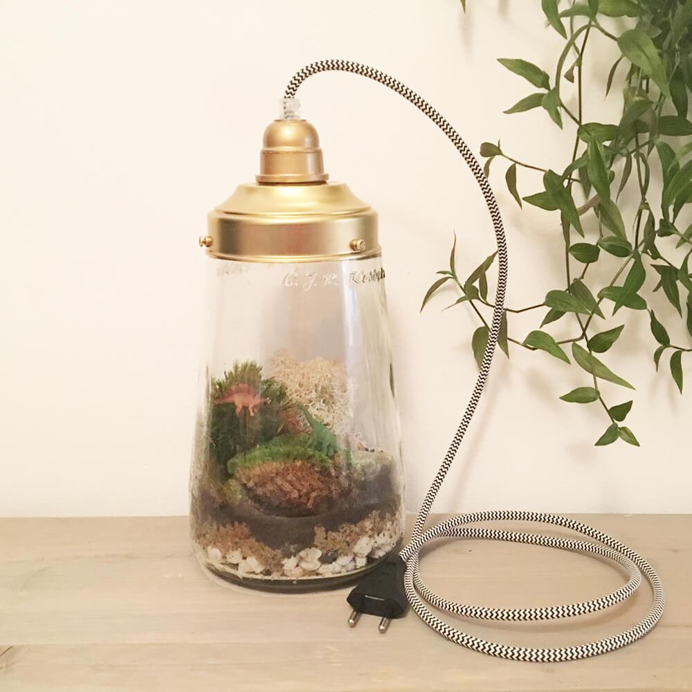 Genoeg ECOSYSTEEMLAMP KOPEN | maak een ecosysteem in een hippe lamp &QC55