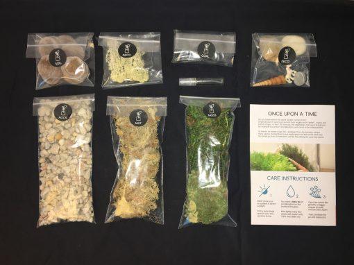 eenhoorn ecosysteem terrarium DIY kit